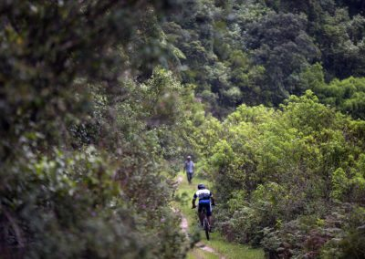 Cycling in to the jungle in Sri Lanka