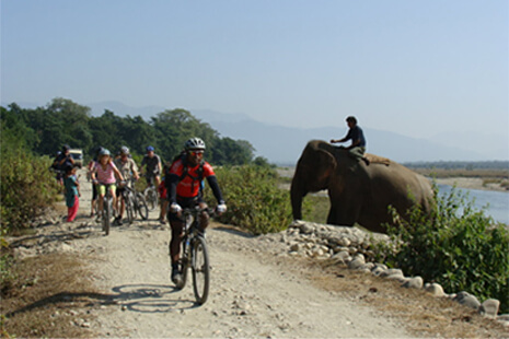 The Full Yak, Kathmandu to Pokhara - Mountain Bike Adventure Holiday, Nepoal, Himalayas